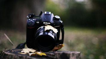 Бесплатные фото фотоаппарат,никон,объектив,черный,листья,пень,разное