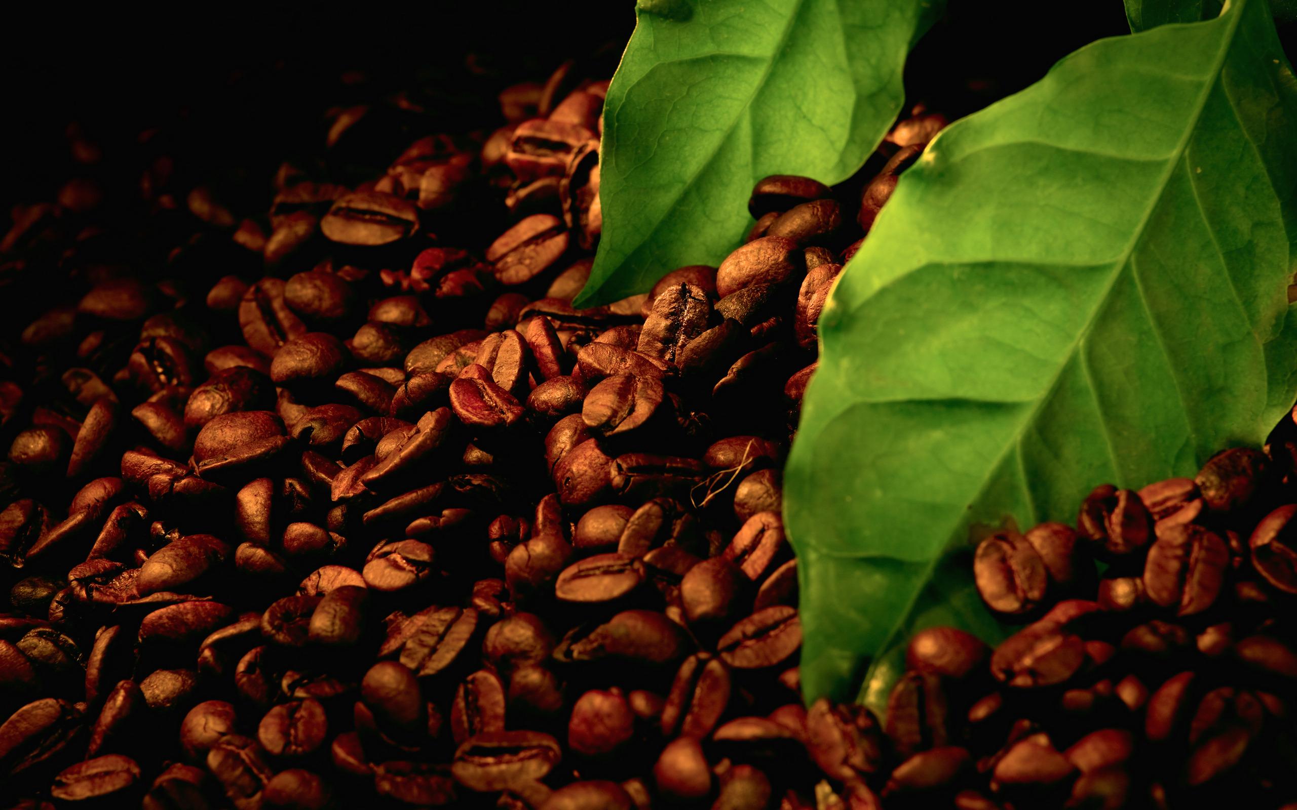 Кофе зерна  № 142112 загрузить