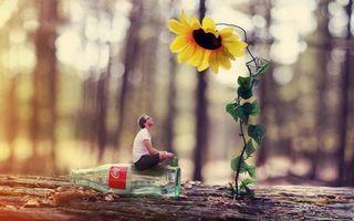 Бесплатные фото креатив,маленький,человек,подсолнух,лейка,бревно,бутылка