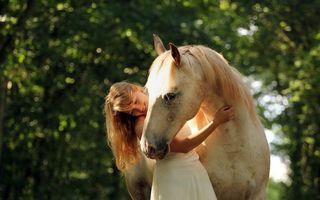 Бесплатные фото лошадь,белая,морда,грива,девушка,улыбка,объятия