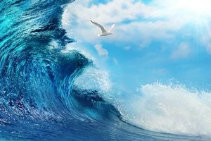 Бесплатные фото море, волна, брызги, чайка, пейзаж