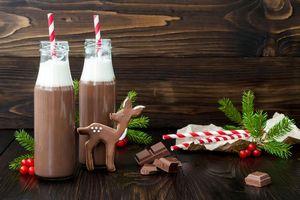 Фото бесплатно праздник, новый год, рождество, печенье, глазурь, шоколад, горячий шоколад, бутылки, трубочки