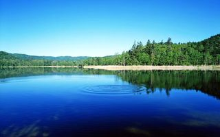 Фото бесплатно природа, озеро, лес, пейзажи