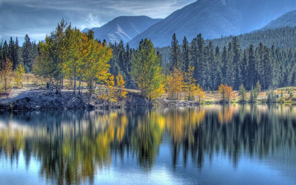 Фото бесплатно река, вода, отражение, деревья, небо, облака, природа, природа - скачать на рабочий стол