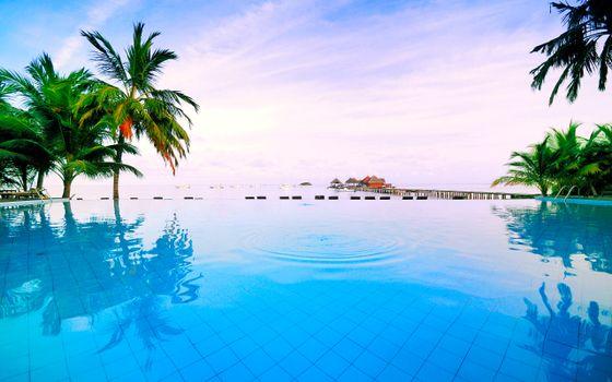 Photo free landscapes, tropics, swimming pool