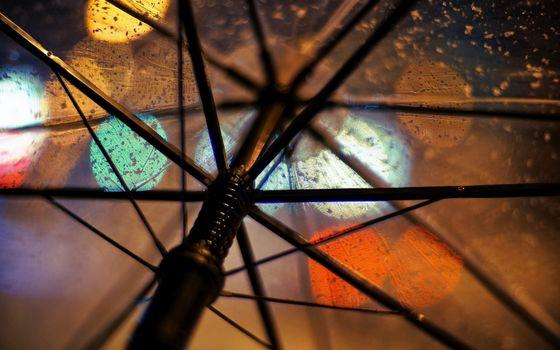 Фото бесплатно влага, дождь, зонтик