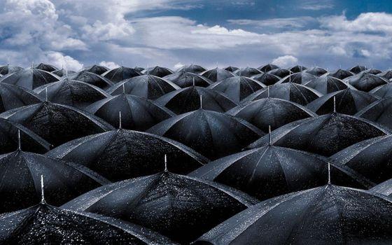 Photo free umbrella, umbrellas, rain