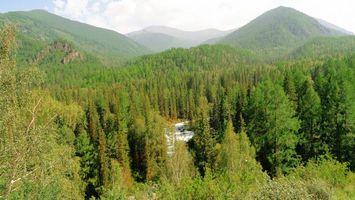 Заставки горы, холмы, лес