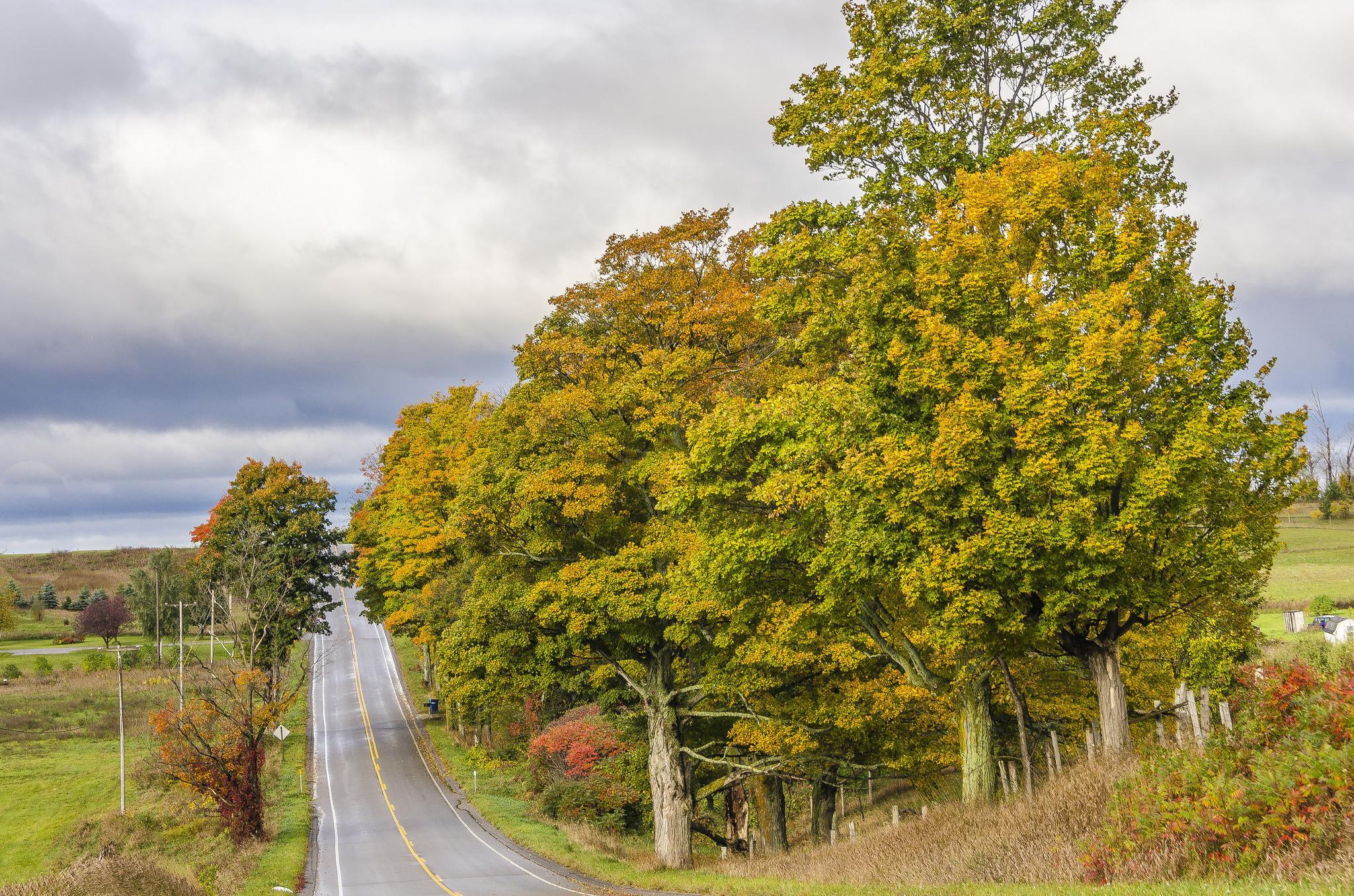 Leelanau Peninsula, Michigan, осень