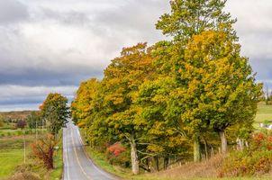 Фото бесплатно Leelanau Peninsula, Michigan, осень