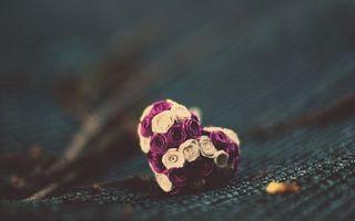 Бесплатные фото сердечко, цветы, ткань, макро