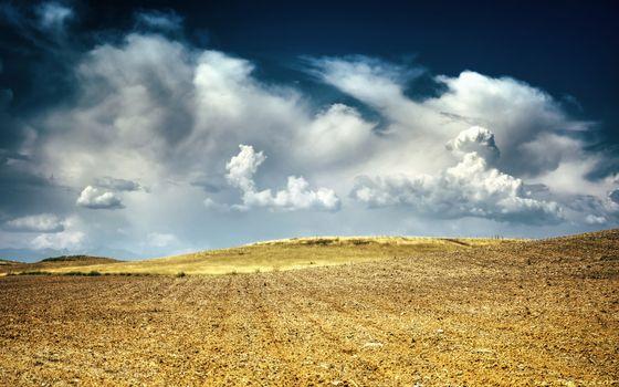 Фото бесплатно солома, трава, поле