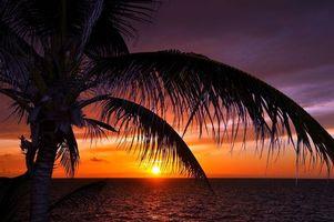 Фото бесплатно тропики, море, вечер