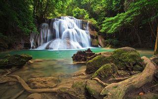 Бесплатные фото водопад, вода, капли, брызги, кора, ветки, деревья