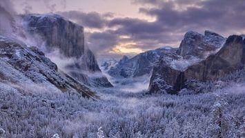 Бесплатные фото зима,горы,деревья,мороз,иней,туман,небо