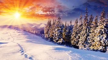 Заставки зима, снег, следы, солнечные лучи, елки, горы, холмы, пейзажи, природа