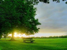 Бесплатные фото городской парк,скамейка,дерево,поляна,трава,восход,солнца