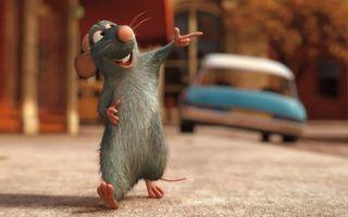 Бесплатные фото франция,pixar,мышенок,дисней,фильм,рататуй,машина