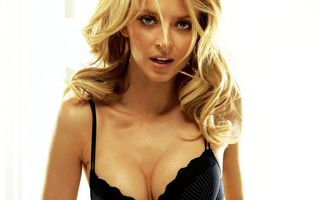 Бесплатные фото дівчина,блондинка,секси,смотрит,красивая,уста,девушки
