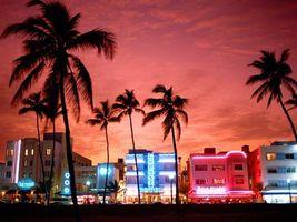 Бесплатные фото дома,свет,окна,огни,пальмы,небо,город