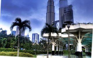 Бесплатные фото дома,здания,высотки,офисы,деревья,пальмы,листья