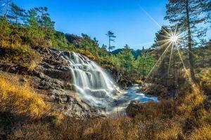 Бесплатные фото Norwegian,лес,деревья,скалы,водопад