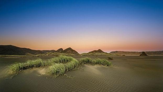 Фото бесплатно песок, волны, трава