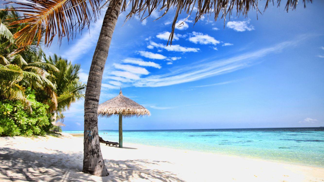 Фото бесплатно пляж, лето, солнце - на рабочий стол