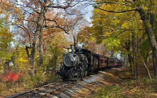 Обои поезд, рельсы, шпалы, листья, деревья, кусты, лес, парк, природа, пейзажи, разное