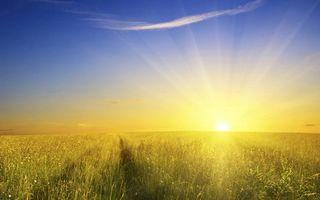 Заставки поле, солнце, лучи