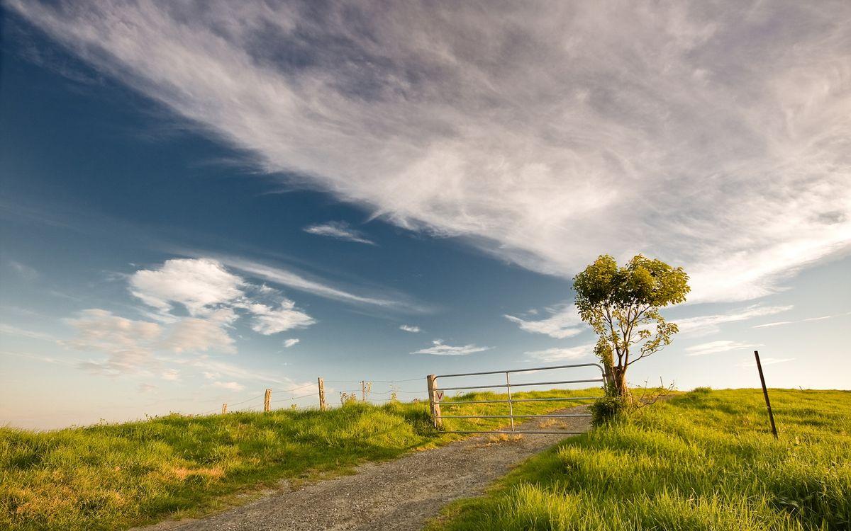 Фото бесплатно поле, трава, небо, облака, дорога, камни, песок, забор, столб, дерево, листья, природа, пейзажи, пейзажи