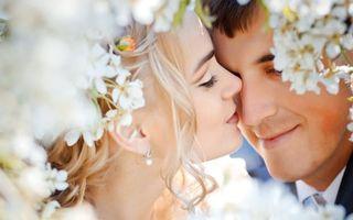 Бесплатные фото свадьба, цветы, пара, жених, невеста, нежность, праздники