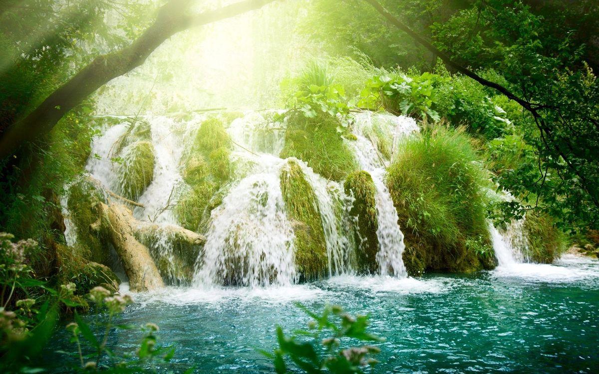 Фото бесплатно водопад, лес, солнце, природа, природа