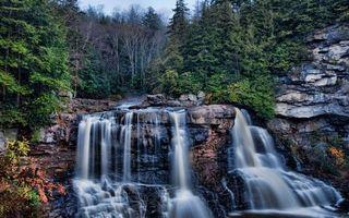 Фото бесплатно водопад, вода, деревья