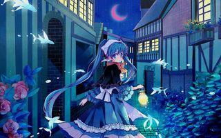 Бесплатные фото девочка,волосы,прическа,луна,дома,здания,окна