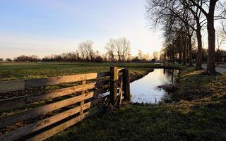 Бесплатные фото дорога,деревья,ограда,арык,вода,поле,трава