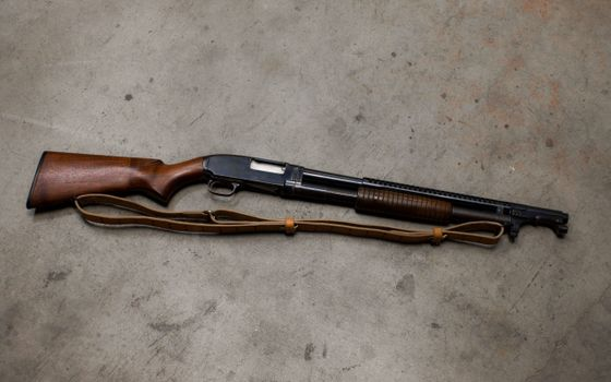 Photo free shotgun, butt, fore-end