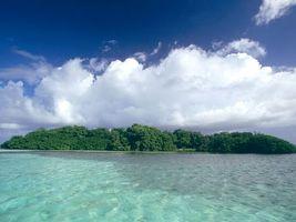 Photo free sky, island, forest