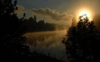 Фото бесплатно озеро, вода, волны, пруд, деревья, елки, ели, лес, берег, солнце, лучи, лето, тепло, природа, пейзажи