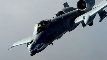 Бесплатные фото самолет,военный,акула,кабина,пилот,крылья,авиация