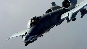 Фото бесплатно самолет, военный, акула, кабина, пилот, крылья, авиация