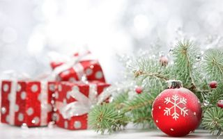 Бесплатные фото шар,снежинка,елка,сосна,ветка,ягоды,украшение