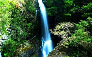 Фото бесплатно водопад, гора, лес