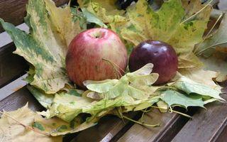 Заставки фрукты, яблоки, спелые, листья, большие, скамейка, еда