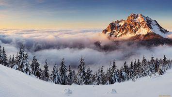 Фото бесплатно горизонт, природа, небо