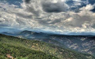 Бесплатные фото холмы,простор,деревья,лес,елки,возвышенность,небо