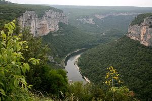 Бесплатные фото каньон,разлом,река,ущелье,деревья,лес,листья