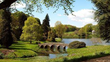 Бесплатные фото лес,трава,зеленая,деревья,речка,мост,небо