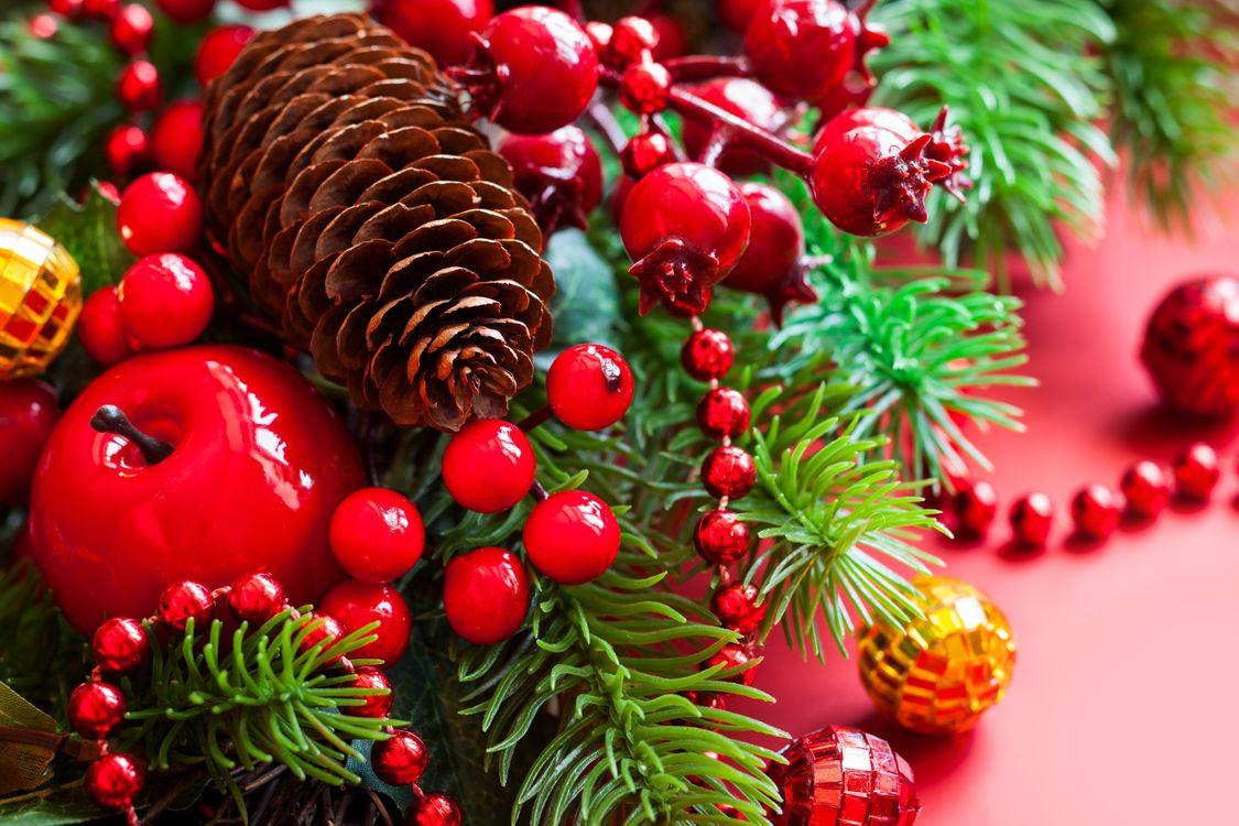 Фото бесплатно ёлка, шишка, мишура, праздники, праздники
