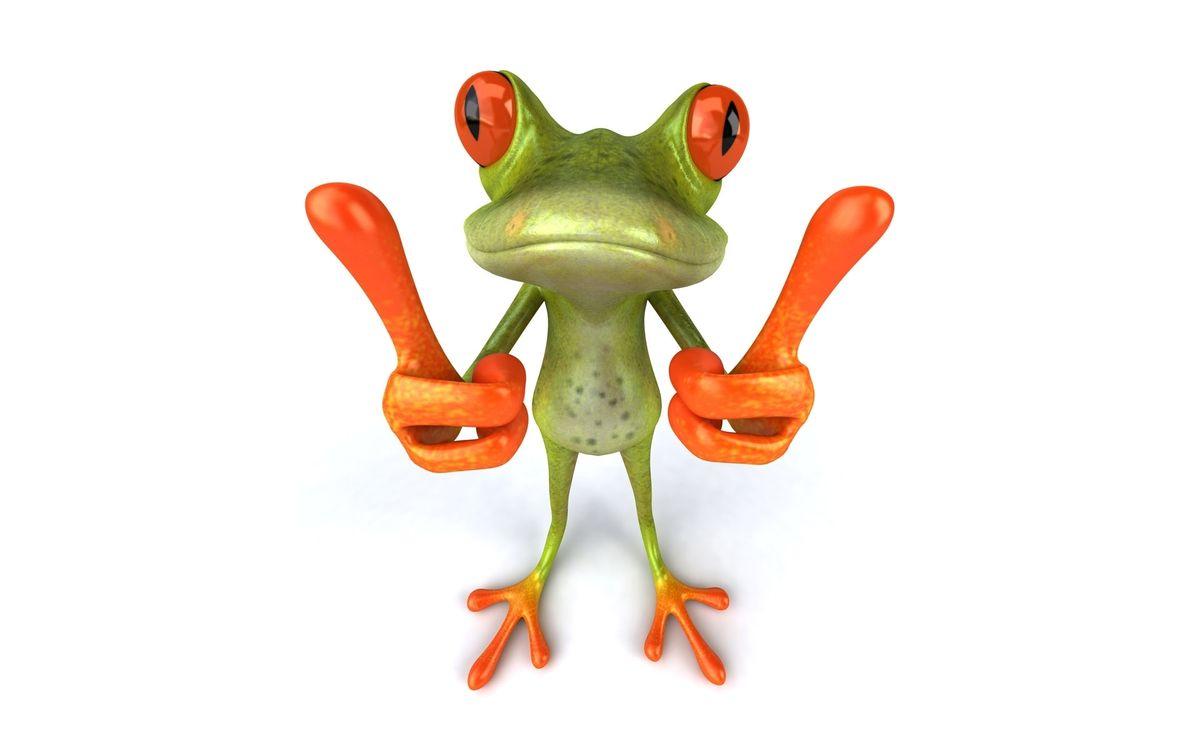 Фото бесплатно лягушка, зеленая, глаза, красные, лапы, оранжевые, минимализм, минимализм